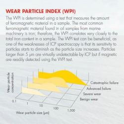 Shell RLA Analysis